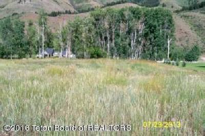 Afton Residential Lots & Land For Sale: LOT 105 Young Ln