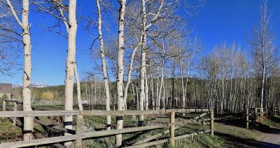 Teton County Residential Lots & Land For Sale: 25630 Wild Hollyhock
