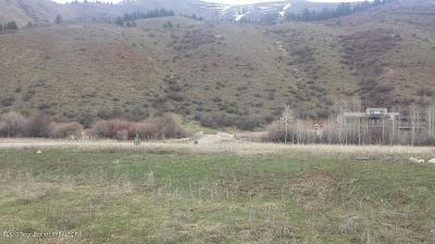 Afton WY Residential Lots & Land For Sale: $39,900