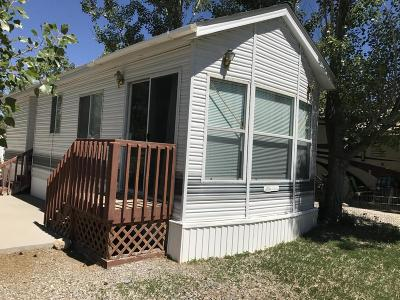 Thayne Single Family Home For Sale: 2 Hub Rd