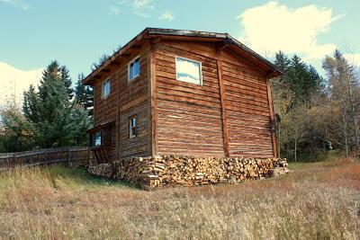 Jackson Single Family Home For Sale: 10900 S Dora St