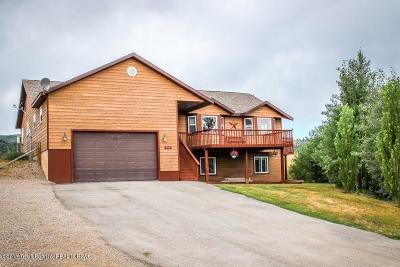 Afton Single Family Home For Sale: 316 Hillview Dr
