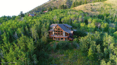 Star Valley Ranch WY Single Family Home For Sale: $630,000