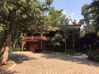 Jackson Single Family Home For Sale: 325 E Avalanche Canyon Drive