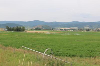Freedom Farm & Ranch For Sale: Cr 239 & Hwy 89