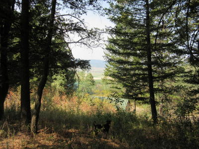 Star Valley Ranch Residential Lots & Land For Sale: LOT 64 Alpenglow Dr