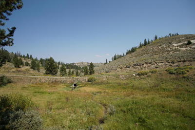Residential Lots & Land For Sale: Crazy Moose Rd