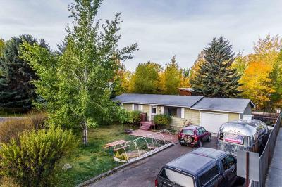 Jackson Single Family Home For Sale: 445 Scott Ln