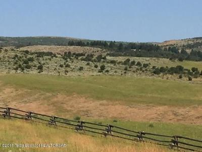 Afton WY Farm & Ranch For Sale: $840,000