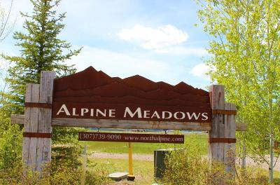 Alpine Residential Lots & Land For Sale: LOT 42 Aster Loop