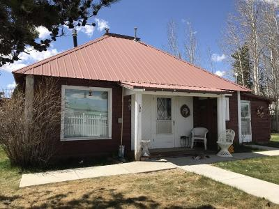 Pinedale Single Family Home For Sale: 136 South Madison