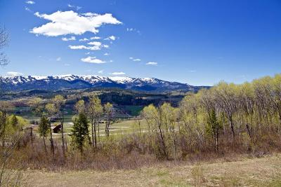 Alpine Residential Lots & Land For Sale: 3 Shadow Dancer Est