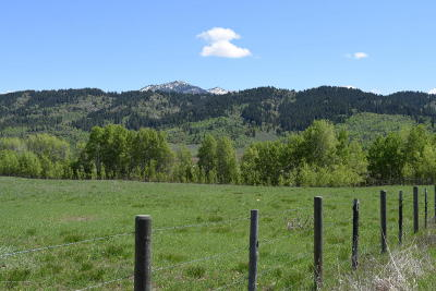 Alpine Residential Lots & Land For Sale: LOT 10 Black Mountain Lane