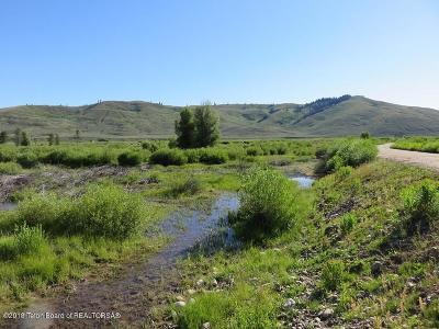 Bondurant Farm & Ranch For Sale: LOT 1 Spirit Winds Way