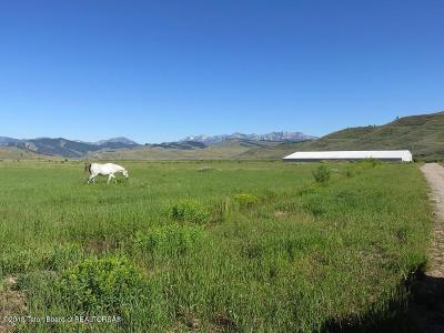 Bondurant Farm & Ranch For Sale: LOT 5 Spirit Winds Way