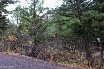 Star Valley Ranch Residential Lots & Land For Sale: PLAT 7 Lot 75