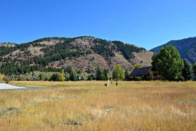 Star Valley Ranch Residential Lots & Land For Sale: P14 L48 Alta Drive