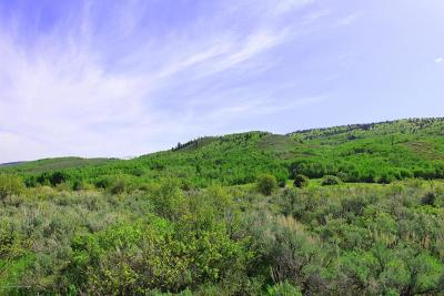 Alta Residential Lots & Land For Sale: 115 Perimeter Dr