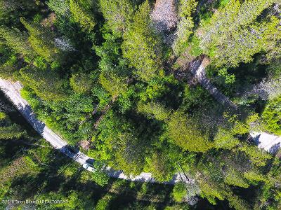 Alpine Residential Lots & Land For Sale: LOT #20 Alpine Meadows Loop
