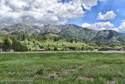 Alpine Residential Lots & Land For Sale: Elkhorn Drive