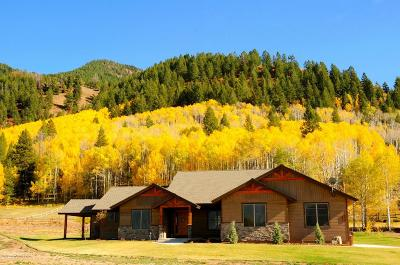 Etna, Freedom Single Family Home For Sale: 363 Upper Stewart Creek