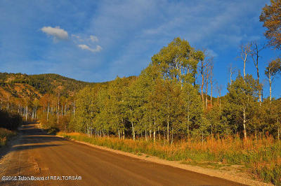 Star Valley Ranch Residential Lots & Land For Sale: LOT 15 Aspen Way