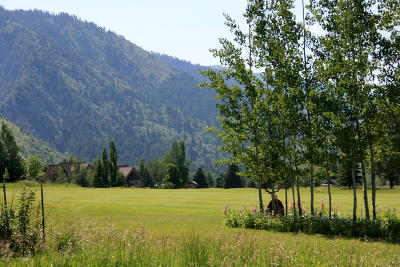 Star Valley Ranch Residential Lots & Land For Sale: SVR UN12 Lot 59 Alpine Way