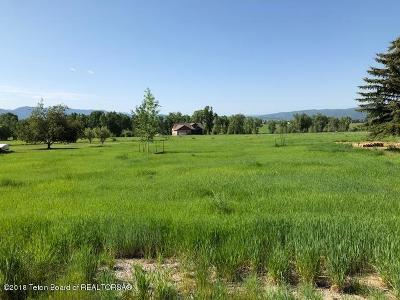 Star Valley Ranch Residential Lots & Land For Sale: 736 Alta Dr