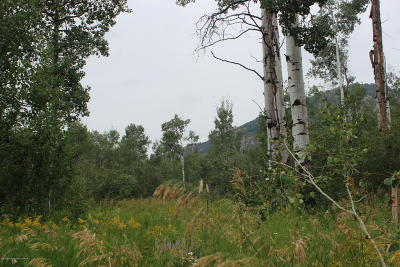 Etna, Freedom Residential Lots & Land For Sale: LOT 24 Quaking Aspen Way
