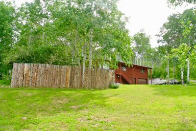 Thayne Single Family Home For Sale: 17 E Elkhorn Drive