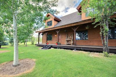 Teton Village, Tetonia, Driggs, Jackson, Victor, Swan Valley, Alta Single Family Home For Sale: 1189 W 9000 S