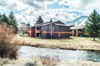 Teton Village, Tetonia, Driggs, Jackson, Victor, Swan Valley, Alta Condo/Townhouse For Sale: 355 W Deloney Avenue #D1