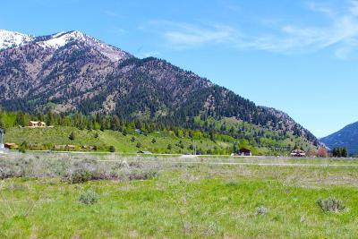 Alpine Residential Lots & Land For Sale: LOT 4 Columbine Street