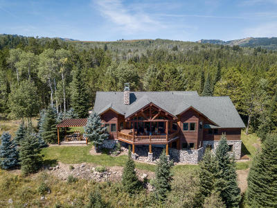 Teton Village, Tetonia, Swan Valley, Victor, Driggs, Jackson, Alta Single Family Home For Sale: 5391 Needle Leaf Ln