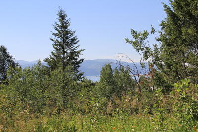 Alpine Residential Lots & Land For Sale: LOT 725 Lakeview Estates