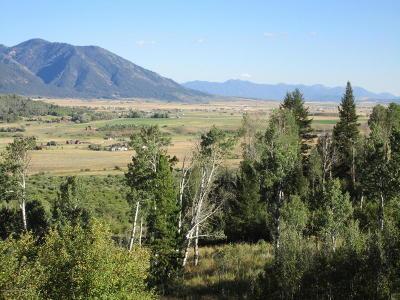 Alpine Residential Lots & Land For Sale: LOT 15 Granite Ridge Drive