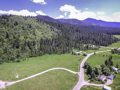 Bedford Residential Lots & Land For Sale: LOT 3 White Moose, Cty Rd 123