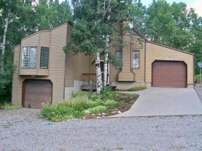 Star Valley Ranch Single Family Home For Sale: 24 Prater Canyon Dr.