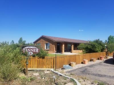 Marbleton Single Family Home For Sale: 203 Winkelman Ave
