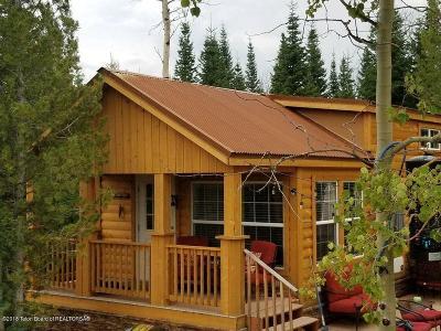 Bondurant Single Family Home For Sale: 71 Chippewaugh Lane
