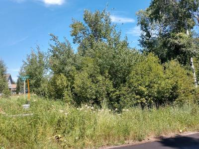 Residential Lots & Land For Sale: 680 Streamside St