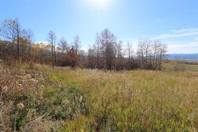 Star Valley Ranch Residential Lots & Land For Sale: LOT 1 Birch (Plat 2) Dr