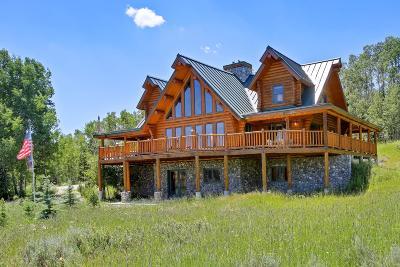 Bondurant Single Family Home For Sale: 690 Upper Hoback Rd
