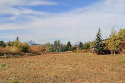 Teton County Single Family Home For Sale: 25560 N Wild Hollyhock Ln