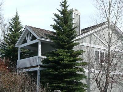 Driggs, Felt, Tetonia, Victor, Alta, Hoback Jct., Jackson, Moran, Teton Village, Wilson Condo/Townhouse For Sale: 3461 Boxelder Pl #10