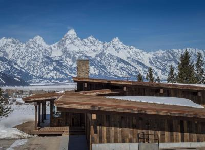 Kelly Single Family Home For Sale: 7662 E Teton Valley Ranch Road
