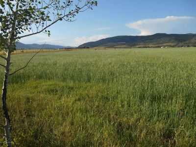 Smoot WY Residential Lots & Land For Sale: $219,000