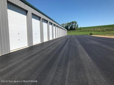 Thayne Commercial For Sale: 205 Fresian #A19