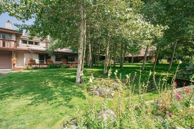 Teton Village, Tetonia, Swan Valley, Victor, Driggs, Jackson, Alta Single Family Home For Sale: 875 Cache Creek Drive
