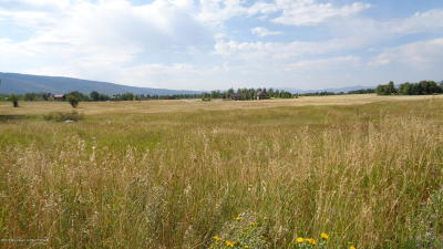 Alta Residential Lots & Land For Sale: 435 Targhee Towne Rd